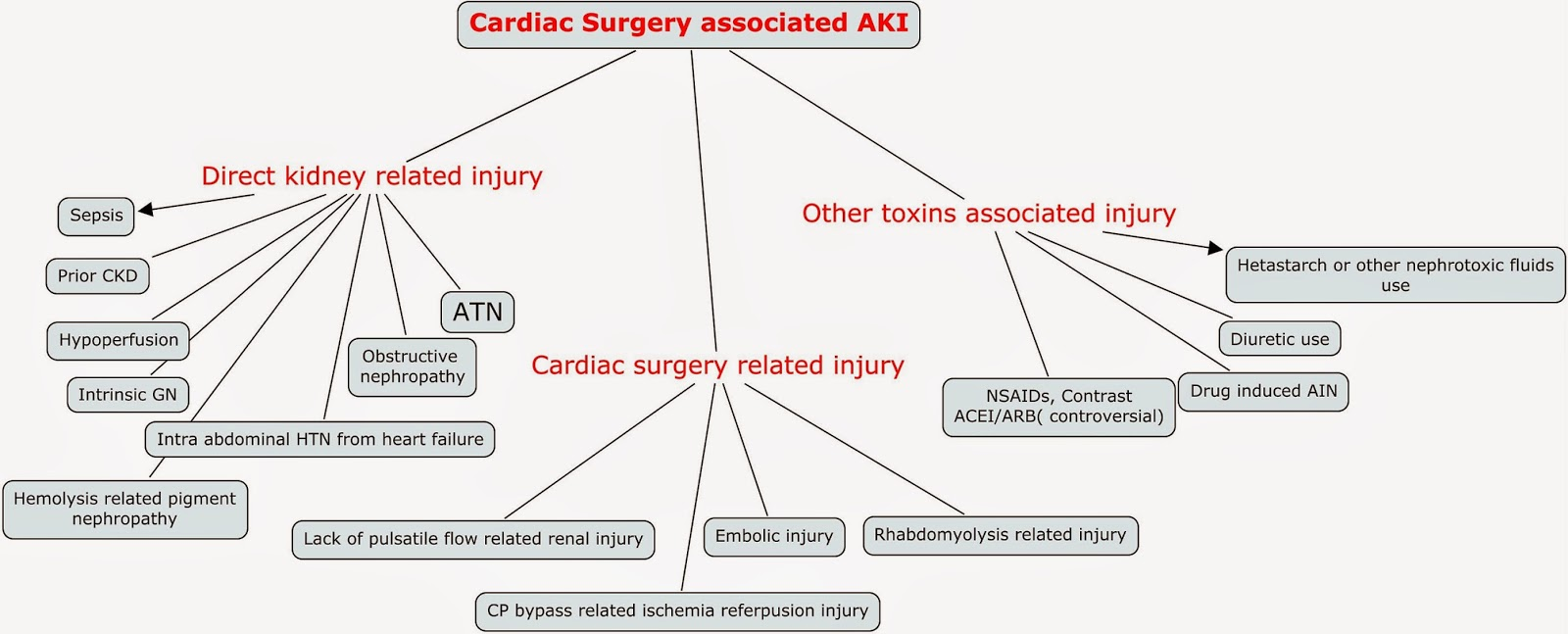 Nephron power concept map cardiac surgery associated acute kidney concept map cardiac surgery associated acute kidney injury ccuart Choice Image