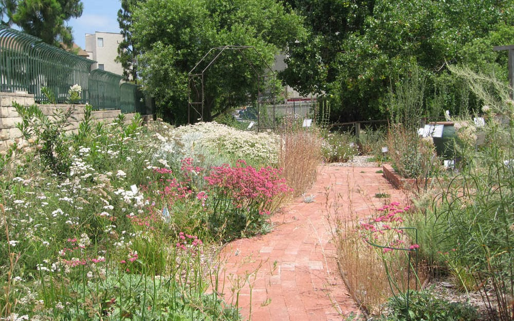 Mother Natures Backyard A Water wise Garden Designing Your