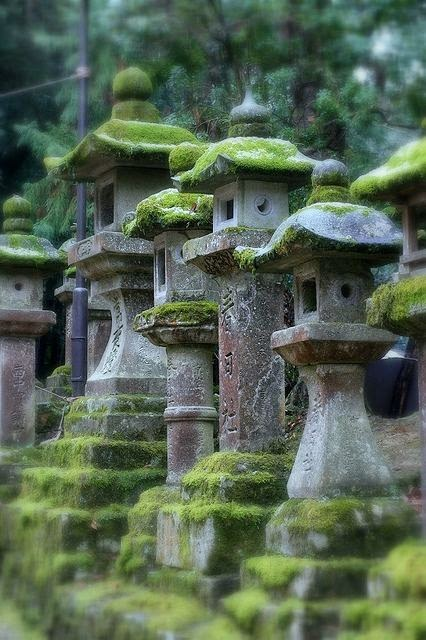taş fener, tapınak yolu, zen bahçeleri, japonya