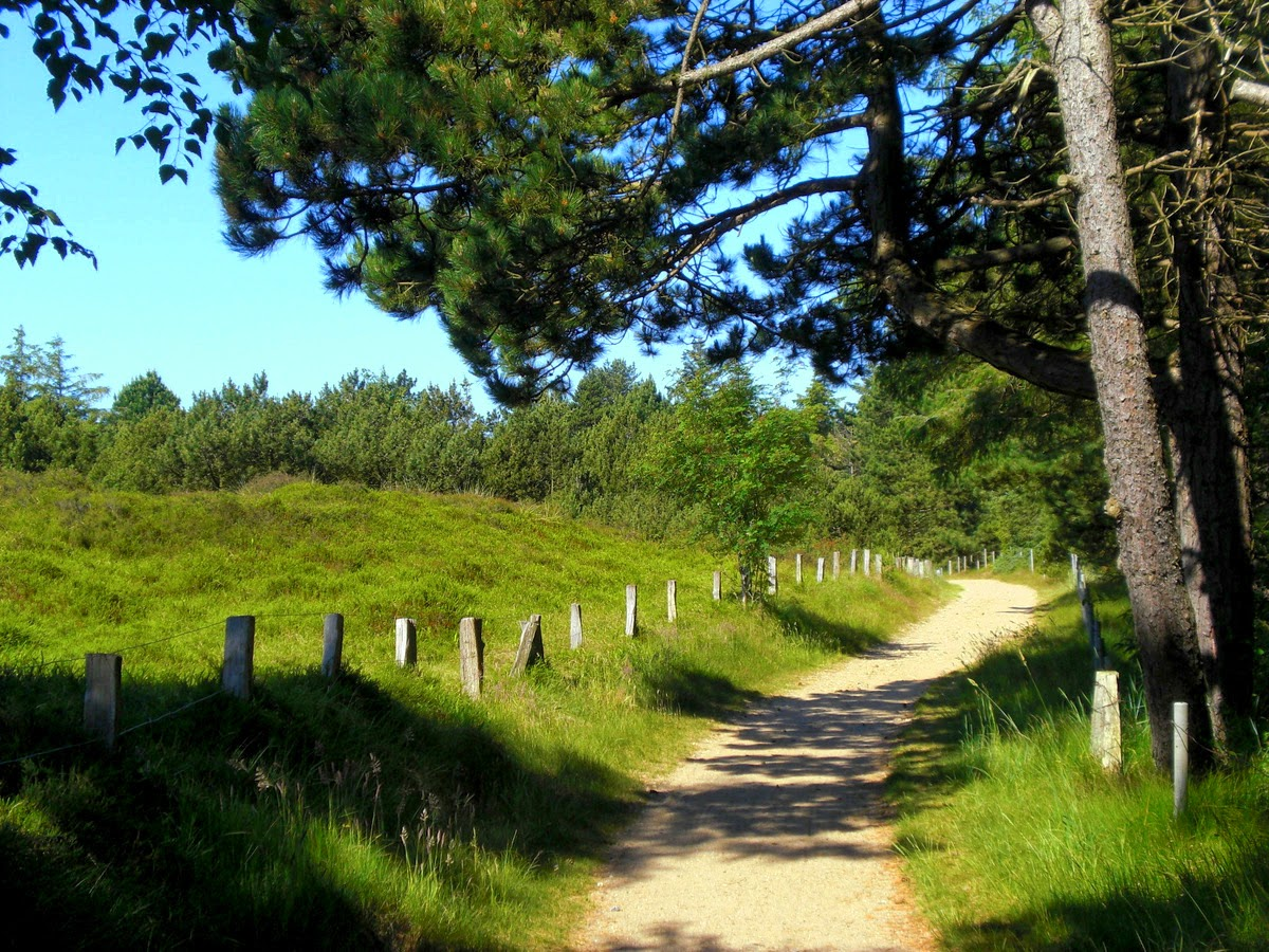 St. Peter-Ording: Historische Wanderwege; Dünenweg