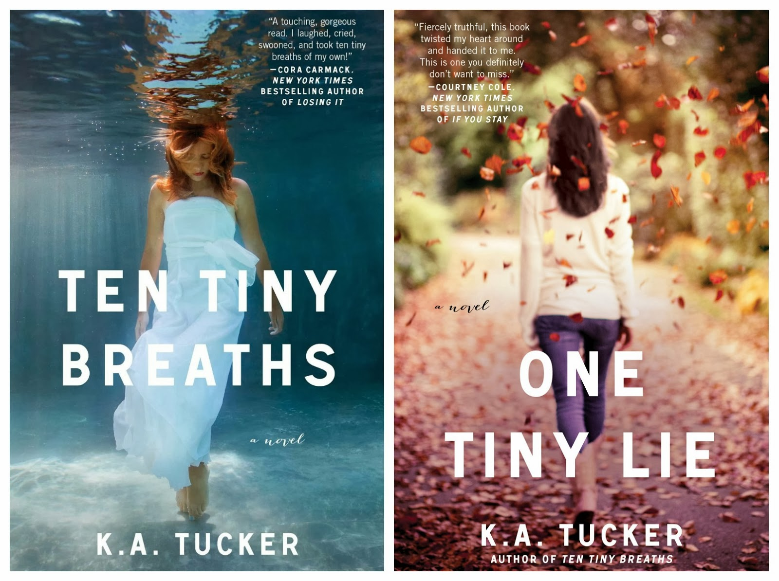 Ten Tiny Breaths and One Tiny Lie by K.A. Tucker book reviews