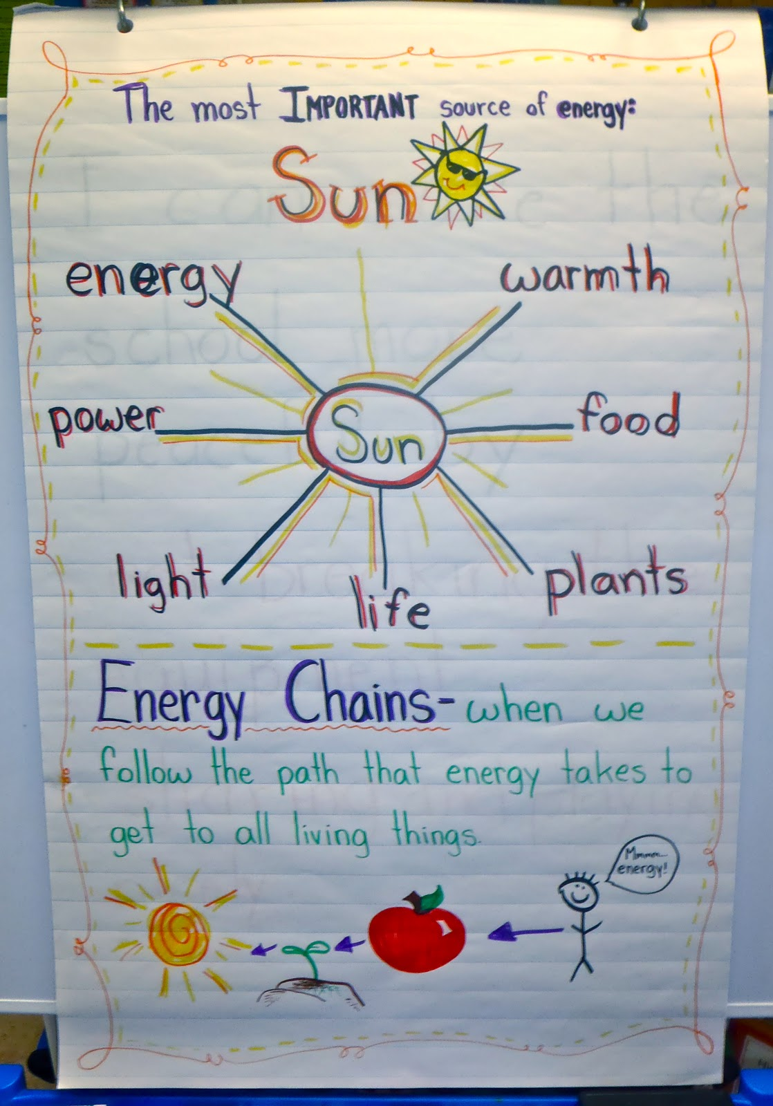 Image of food chain anchor chart this is a great food chain anchor diagram strip diagram anchor chart ccuart Gallery