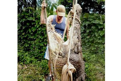 Selama 37 Tahun, Pemburu Ini Telah Bunuh 20.000 Buaya