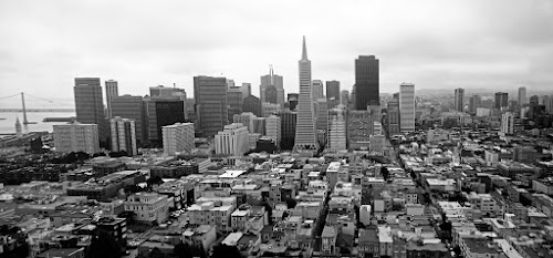 SAN FRANCISCO FROM THE COIT TOWER