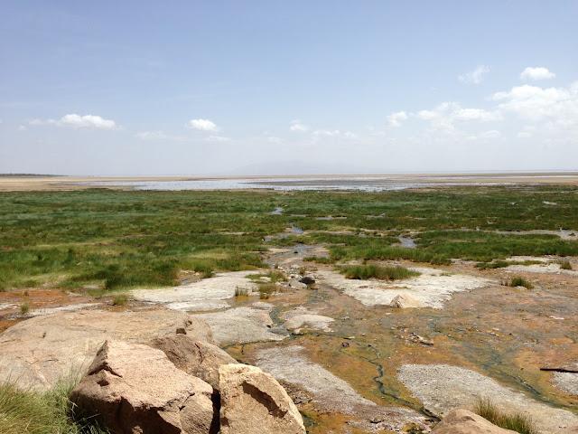 Lake Manyara National Park - Tanzania