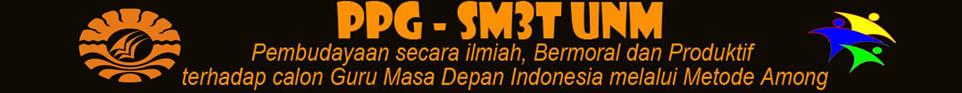 PPG SM-3T UNM