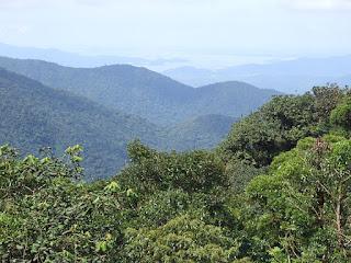 A Baía de Antonina como vista da Serra do Mar Paranaense.
