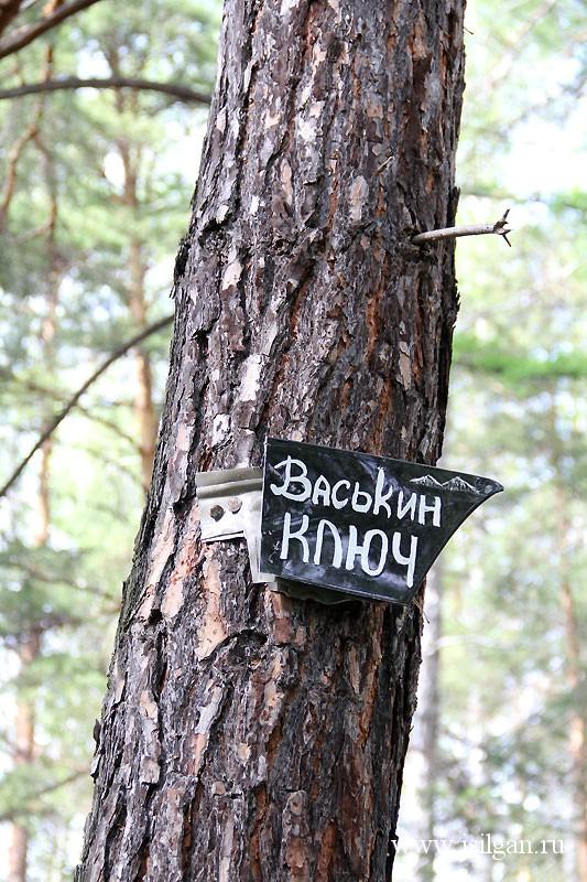 Васькин ключ. Челябинская область