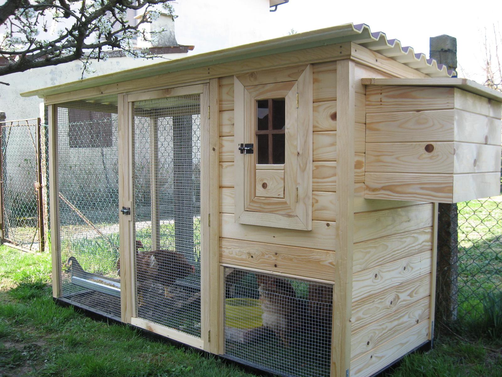 L 39 uliveto sul canal bianco un romantico pollaio for Come costruire un cottage a casa