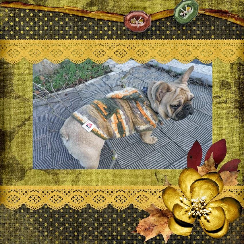 """""""Disfrutando con el crochet""""  (DATE VIDA SC)"""