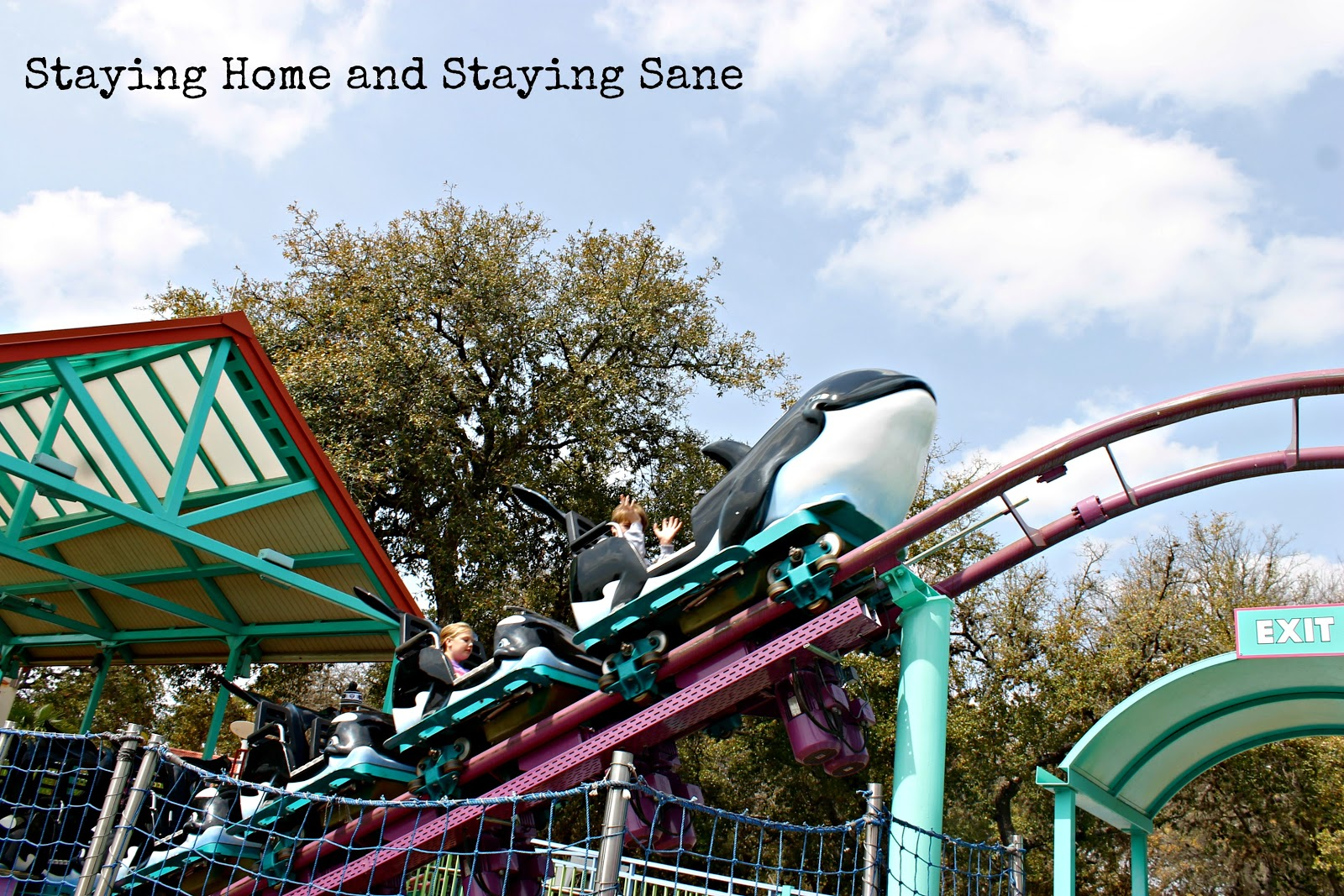 Staying home and staying sane seaworld san antonio family fun yes even with a teenager in tow