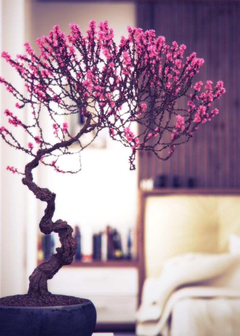 Bonsai Tree 24 Excellent Pink Bonsai Tree Ideas