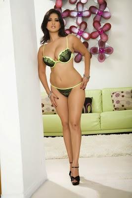 Sunny Leone ternyata adalah seorang bintang film dewasa yang lahir di Ontario Canada