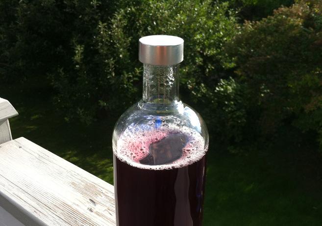 Flaska med röd saft som står på ett räcke. I bakgrunden syns trädkronor.