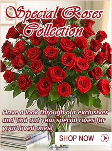Special Flower Collection