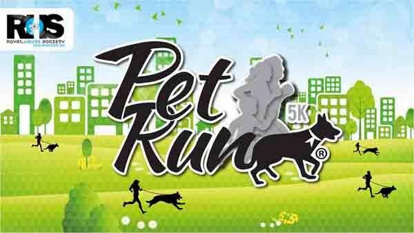 entrenamiento-primera-Pet-Run-Colombia-2014