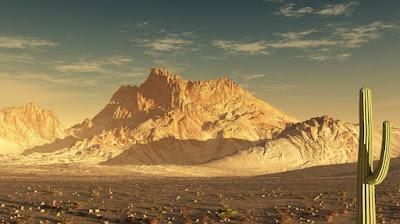 5 Fakta Tentang Gurun Yang Wajib Kamu Ketahui
