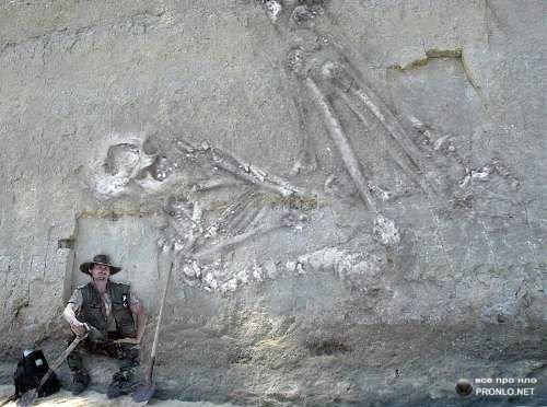 12-meter long human skeleton found in india   jacinth project, Skeleton