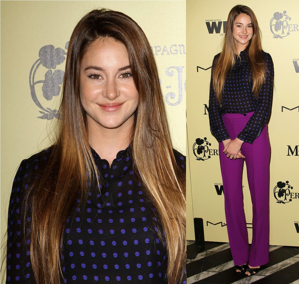 http://2.bp.blogspot.com/-iRSDCdsuJj0/T0kP9U0_dTI/AAAAAAAAFHs/eAyGQfpL9Eo/s1600/Shailene+Woodley+in+Honor+Fall+2012+-+Women+In+Film+Pre-Oscar+Cocktail+Party.jpg