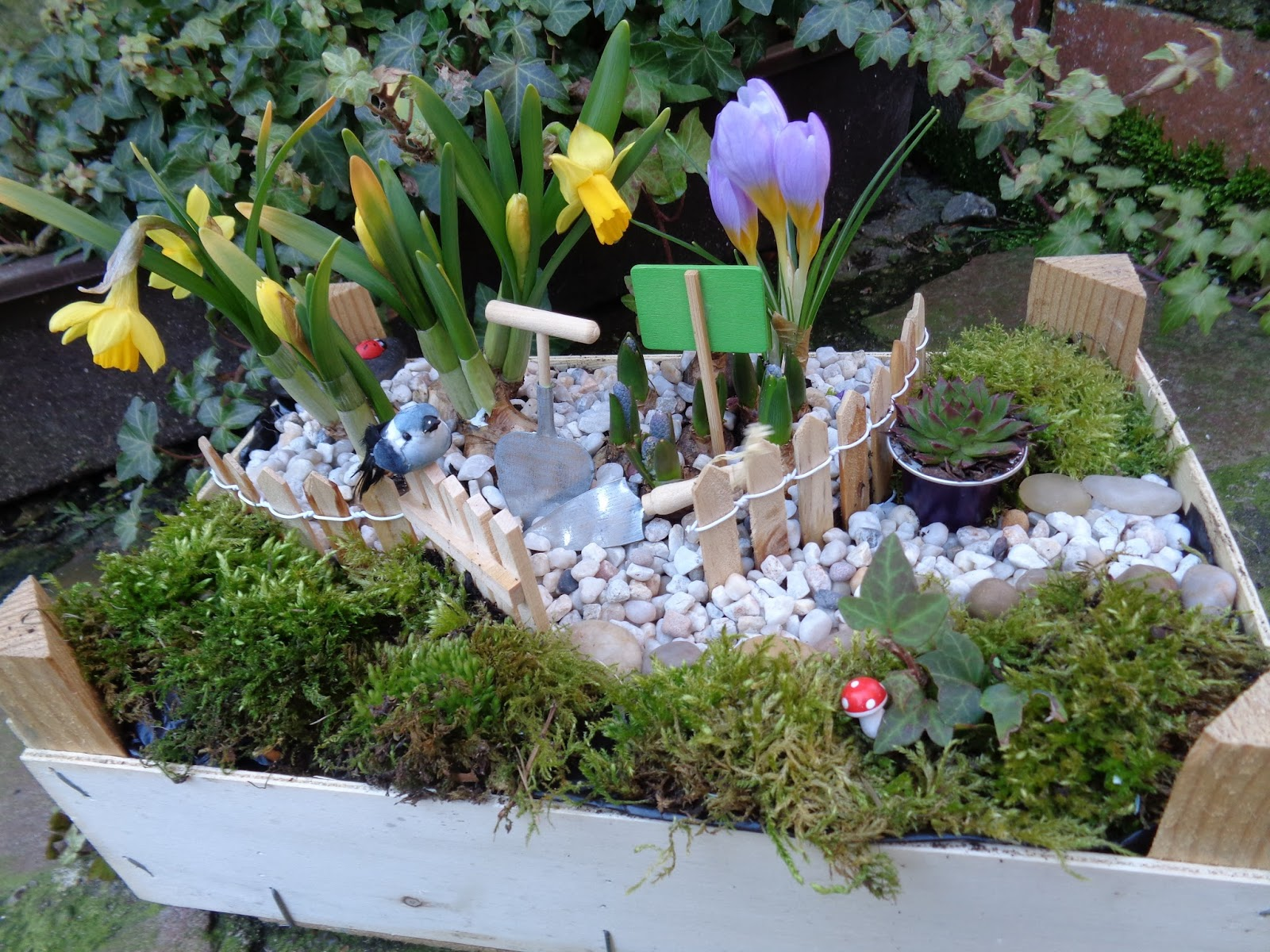 Coeur plein frigo vide mini jardin for Vide jardin tremeoc 2015