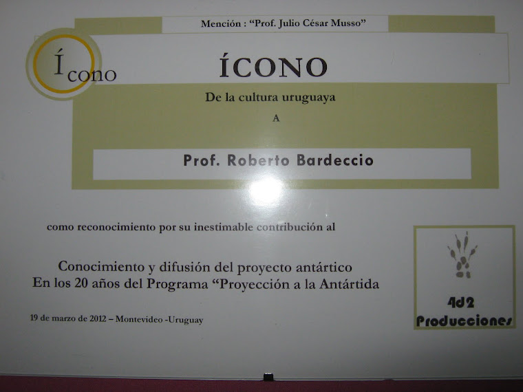 "Diploma Premio ""Ícono 2012"""