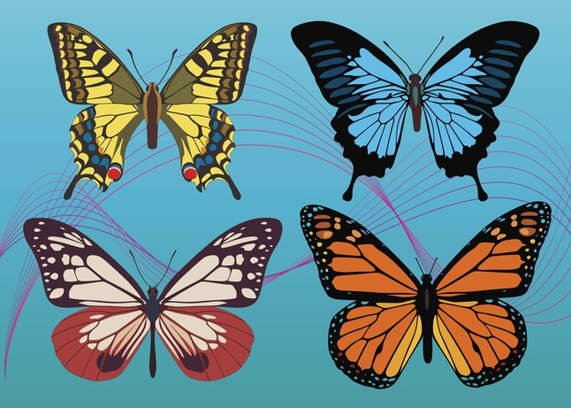 Free Colorful Butterfly Graphics Vectors
