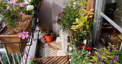 Balcony Decorating ideas with plants | Backyard Design Ideas