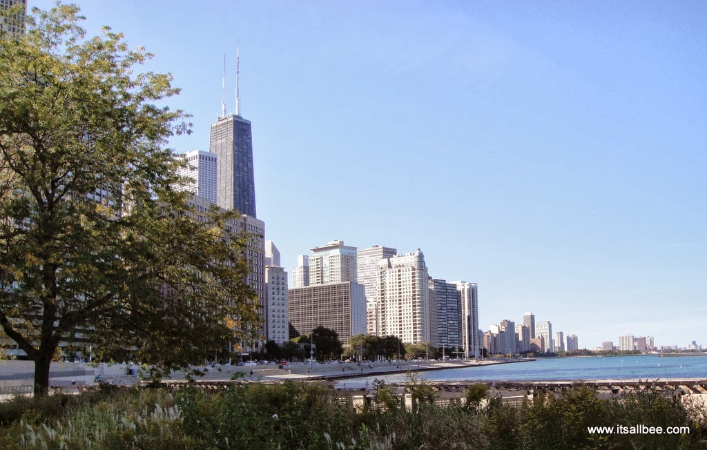 Magnificent Mile Chicago Willis Tower