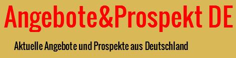 netto prospekt aktuell online