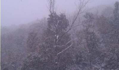 First snow of the season at Boone, NC