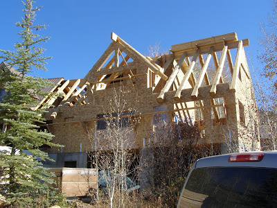 Insulated Roof Panel by RAY-CORE - Beautiful Framing