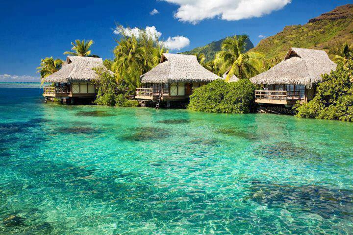 Love Nature Beautiful World Beach Homes