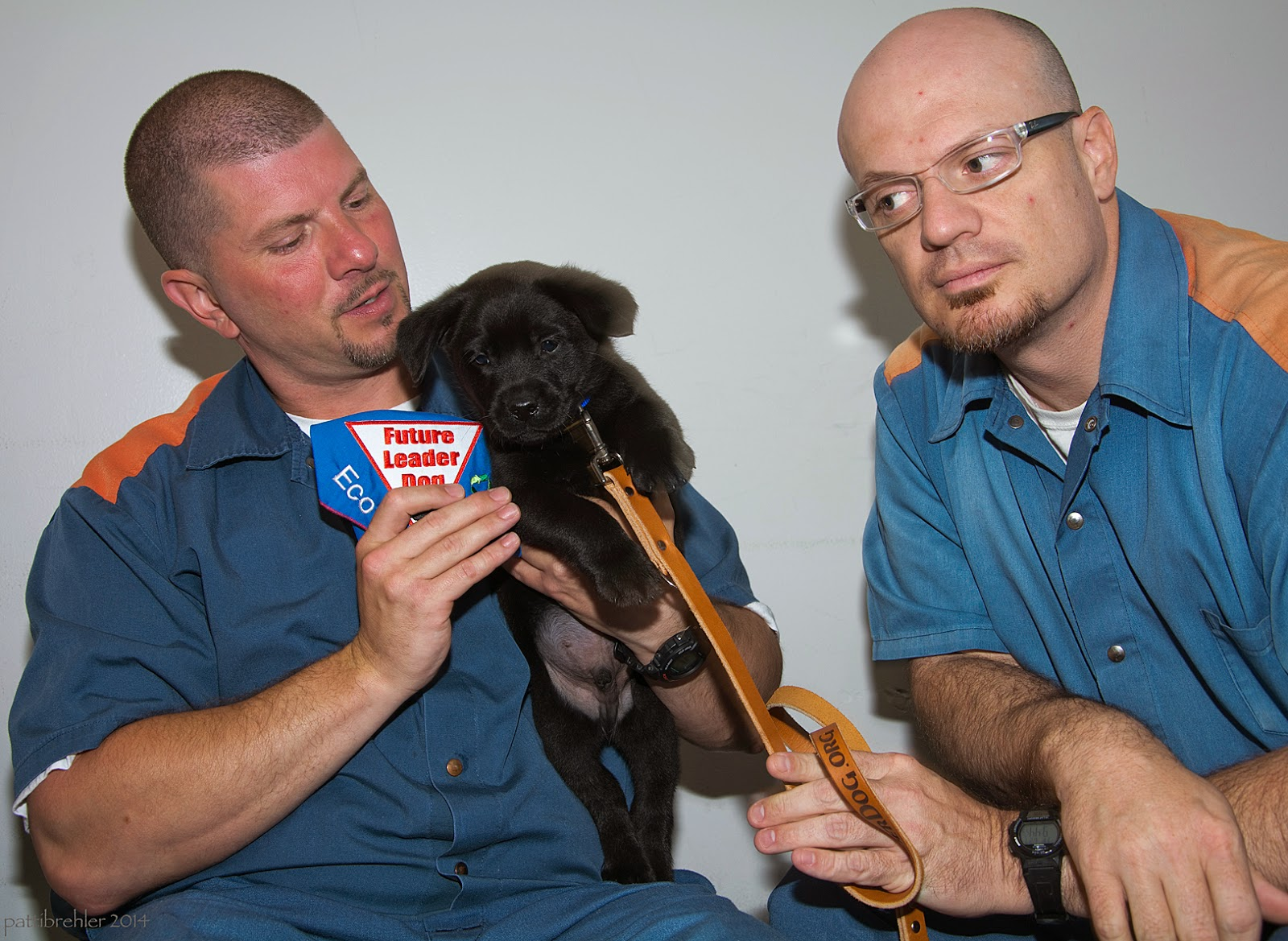 Two men dressed in blue prison uniforms sit with a small black lab puppy. The man on the left is holding the puppy in his left hand against his chest. With his right hand he is holding the blue Future Leader Dog bandana that is embroidered with the puppy's name, Eco. A brown leash is hanging down from the puppy's collar and is held by the man on the right with his left hand. This man's right hand is draped over his left forearm. The man on the right is wearing glasses and is looking toward the puppy. The man on the left is also looking at the puppy. The puppy is the only one looking at the camera!
