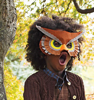 Martha Stewarts Owl Mask