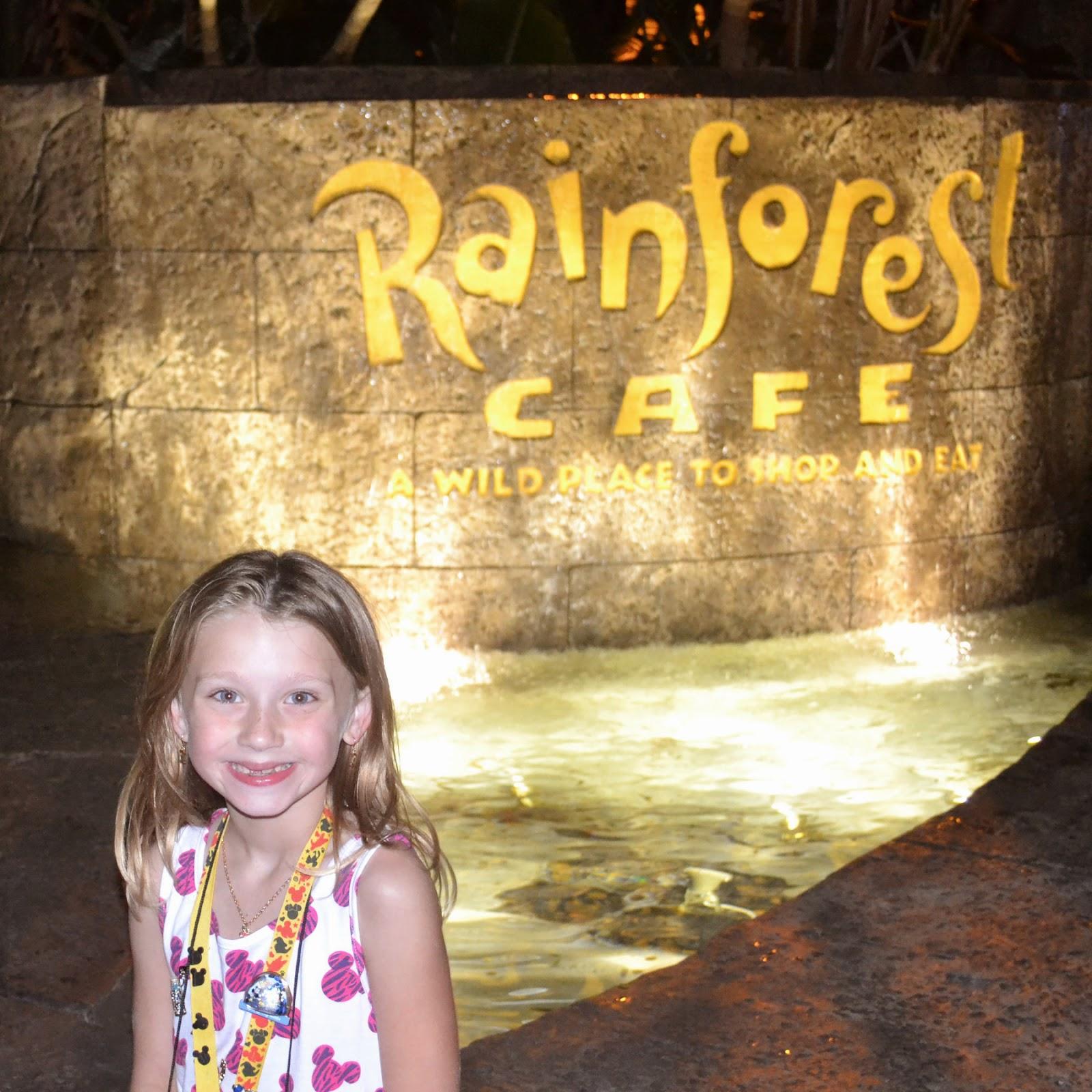 Rainforest Room Disney Dream Price Site Www Disboards Com