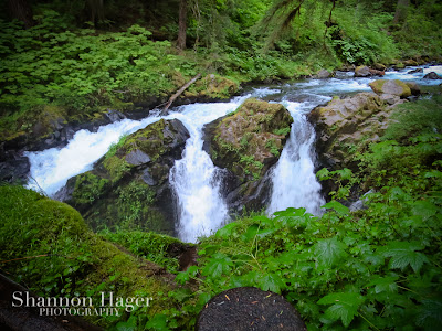 Shannon Hager Photography, Sol Duc Falls