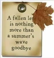 Goodbye Summer...Hello Autumn!