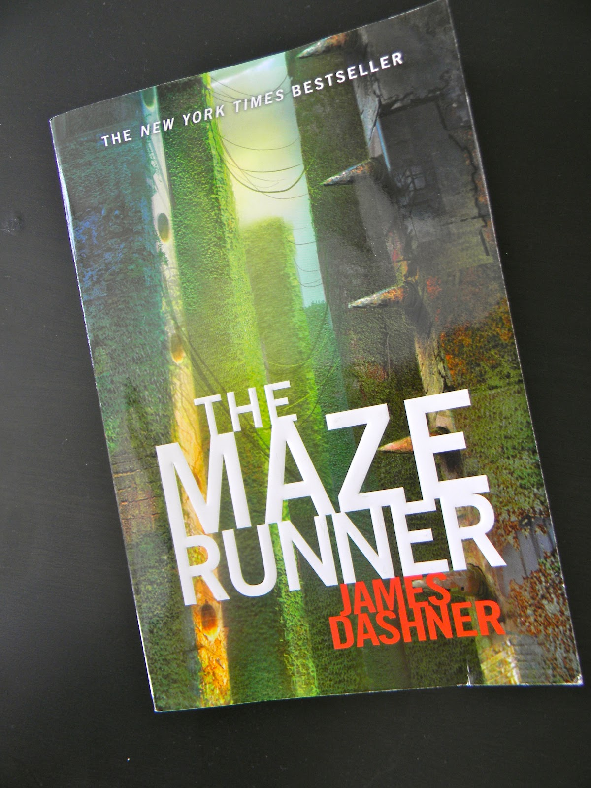 maze runner book essay Essay story elements in maze runner 2565 words | 11 pages dynamic character: alby is a dynamic character in the story the maze runner the drastic changes that alby went through after the changing are clearly apparent.