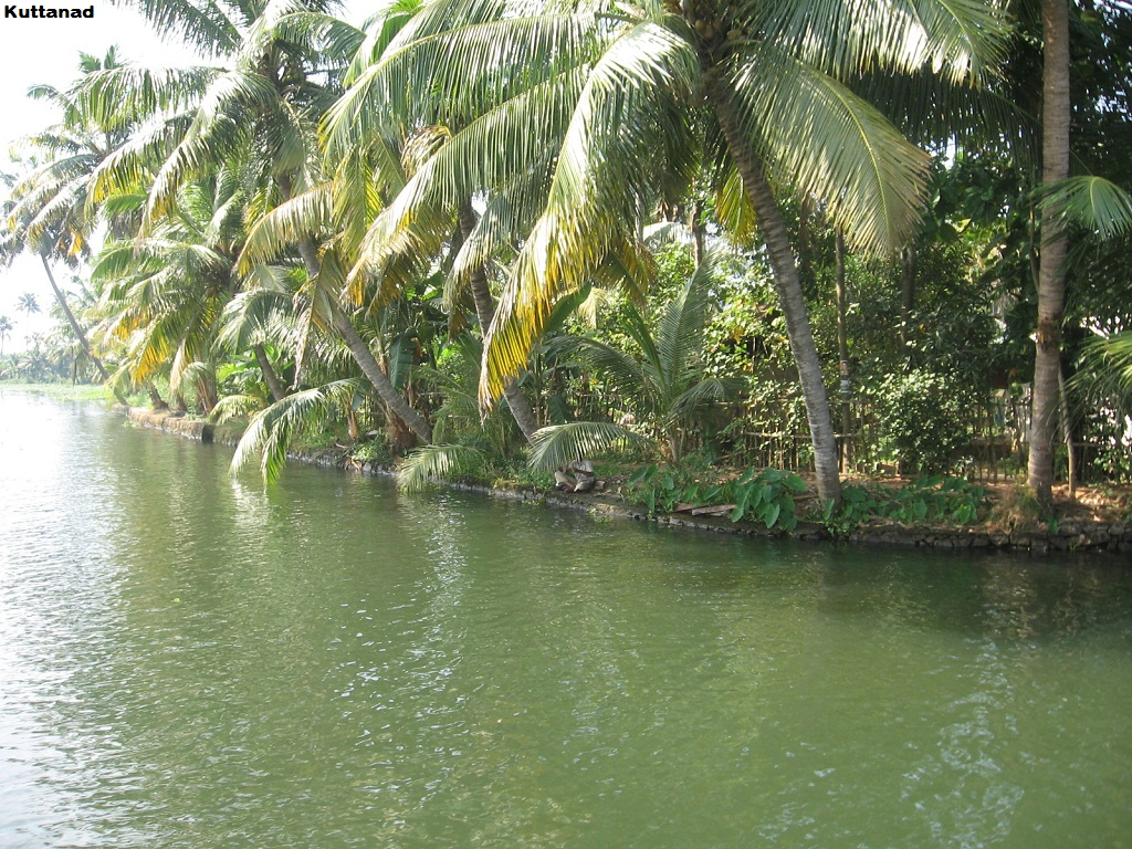 Tourist Attraction India Incredible Tourist Place In Kerala