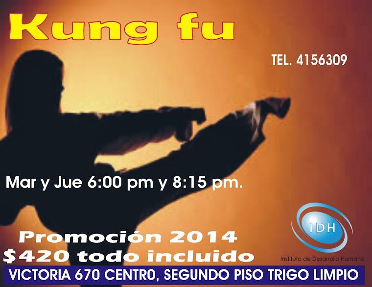 KUNG FU   TAI YON ARTE MARCIAL FILOSOFICO