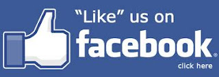 https://www.facebook.com/pages/E-Football-Page/358814007661625