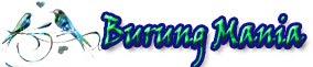 BURUNG MANIA