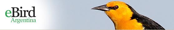 e bird Argentina