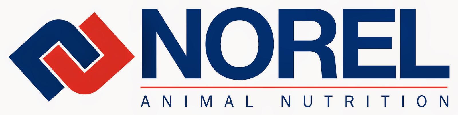 http://www.norel.es/en