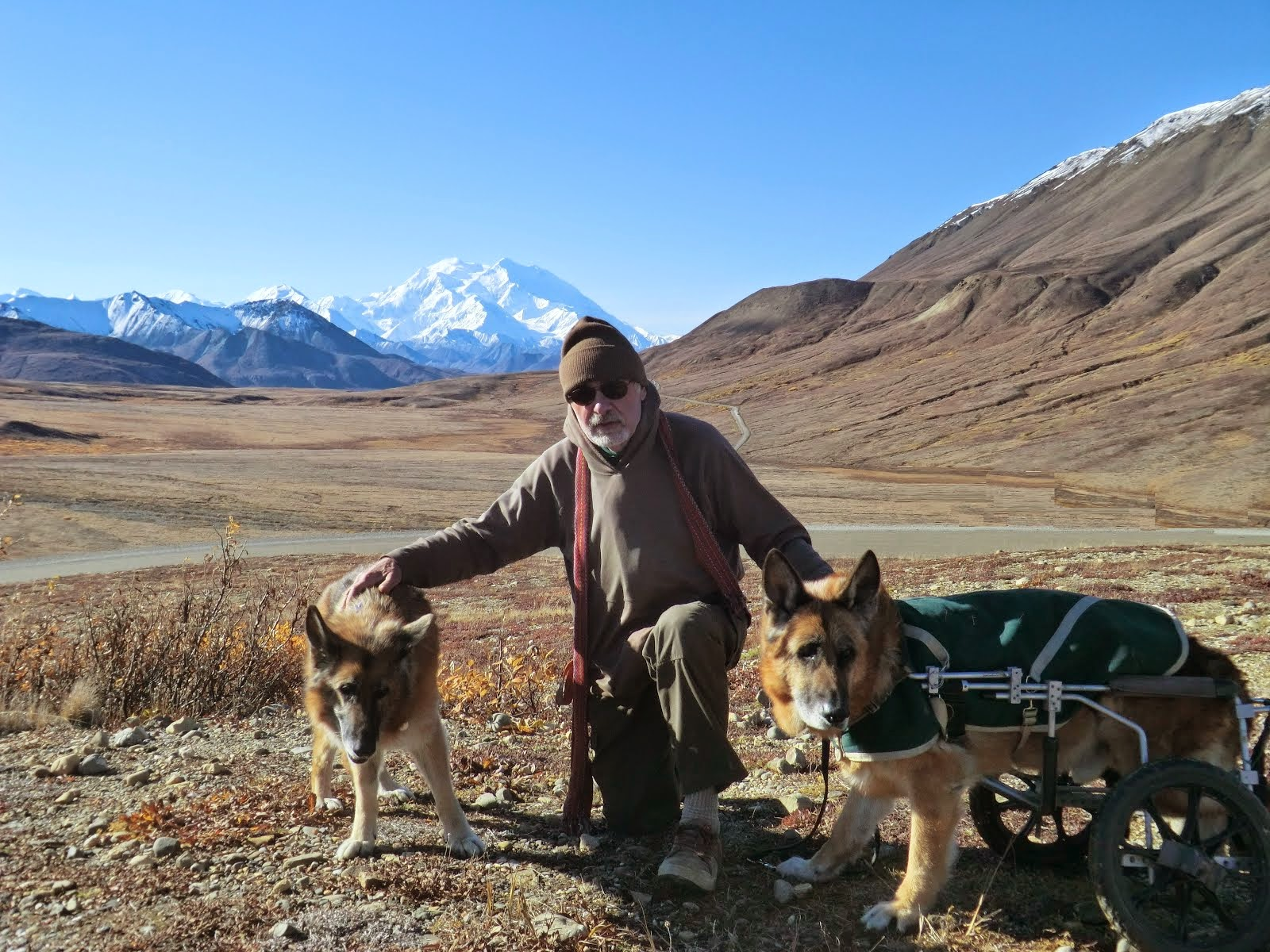 Leben, Ed and Erde with Denali