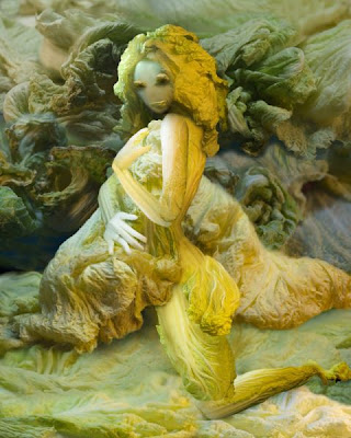 Glamour Cabbage Girls Seen On www.coolpicturegallery.us
