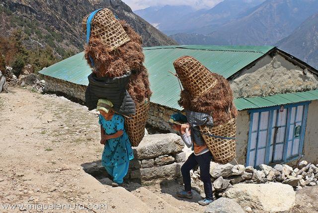 Mujeres-Sherpas