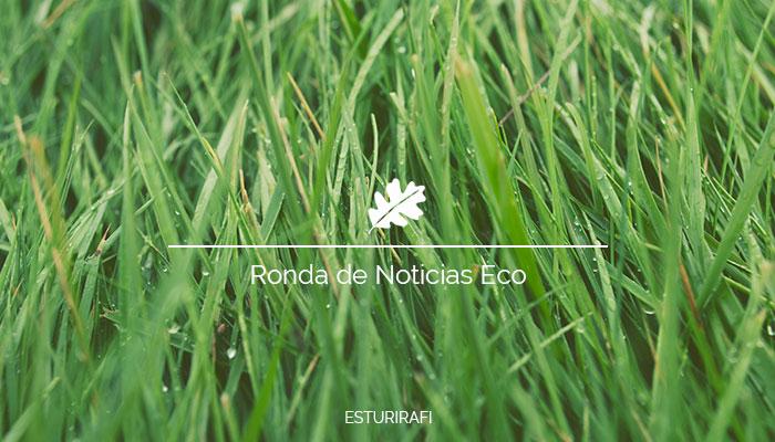 Ronda de Noticias Ecologicas y de medio ambiente