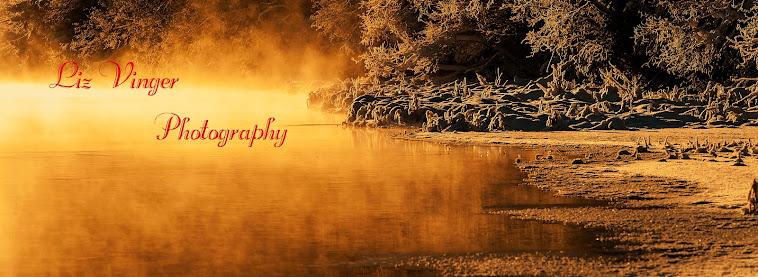 Liz Vinger  Photographer