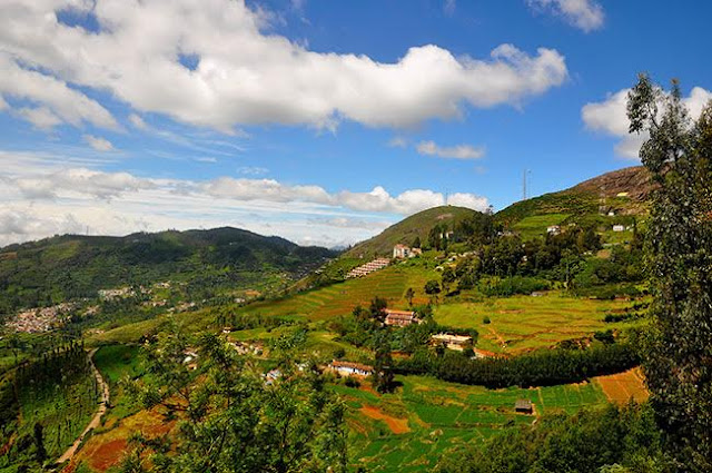 Ooty: Best Hill Stations in South India for Honeymoon
